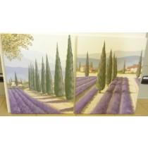 Bilder Set Lavendel