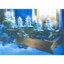 Lichterkette Tannenbäume