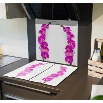 Spritzschutz Orchideen