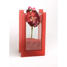 Glas-Vase Orchideen rot