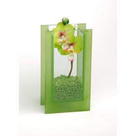 Glas-Vase Orchideen grün